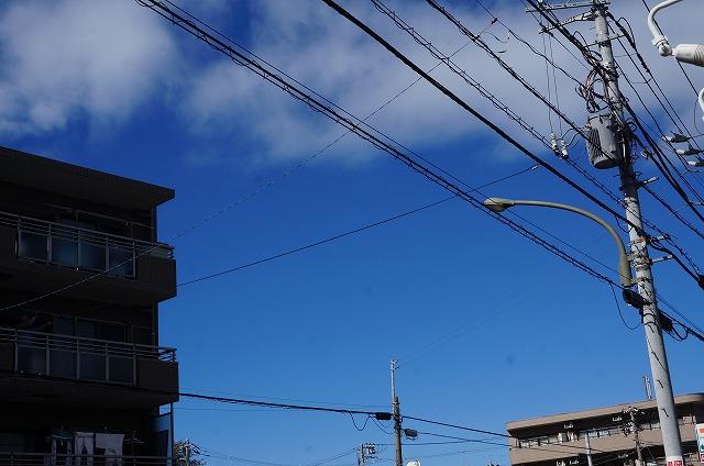 来た~~~ 青空来た~~♪ 洗濯が乾きますね♪♪ 青空好きだ~~~♪♪♪ 10月23日来店のワンちゃん達を紹介します(*^^)v
