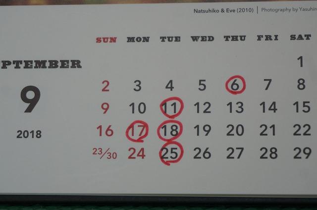 9月6日、17日は都合によりお休みさせて頂きます! 4日火曜日は振替で営業させて頂きます(*^^)v