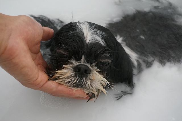 バブル入浴でぬくぬくポカポカリラックス(*´Д`) のんびりのほほん洗浄したら~~