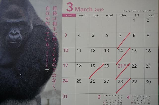 3月19日火曜日は都合によりお休みさせて頂きます! その他は通常通り木曜お休みです!!